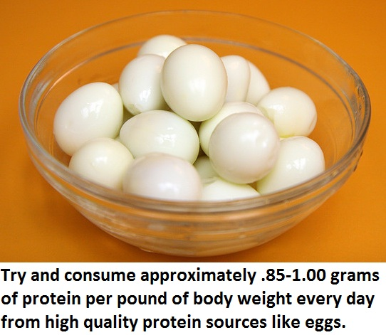 bodybuilding nutrition consume protein from sources like eggs Natural Bodybuilding Nutrition Tips