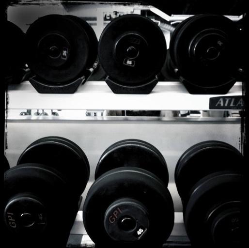 dumbbell rack anatomical adaptation workout for beginners Anatomical Adaptation: A Workout For Beginners