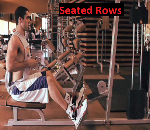 killer back workout for mass seated rows Killer Back Workout For Mass