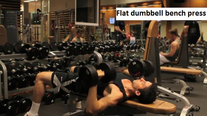 upper body lower body split flat dumbbell bench press Upper Body/Lower Body Split Workout Routine