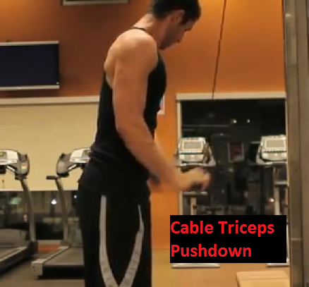 killer tricep workout cable triceps pushdown Killer Tricep Workout | Tricep Superset