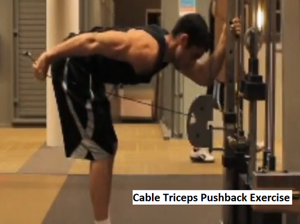 Arm and shoulder workout video triceps pushback Shoulder and Arm Workout Video