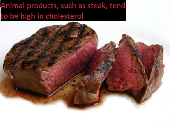 steak is a dietary source of cholesterol What is Cholesterol?