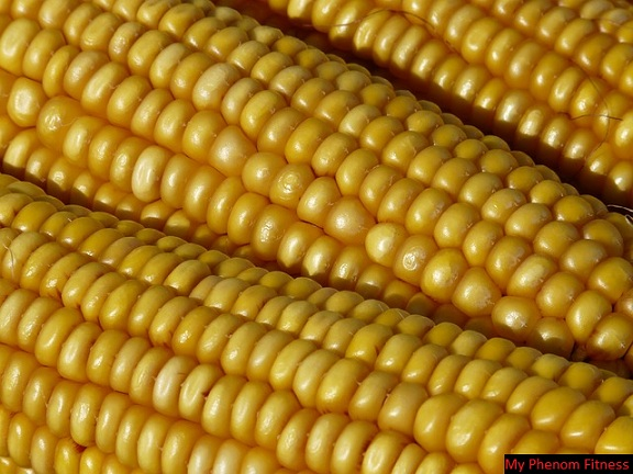 corn is used to make high fructose corn syrup High Fructose Corn Syrup Dangers