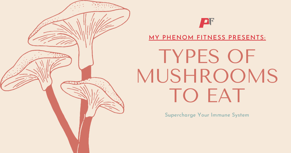 Types Of Mushrooms To Eat